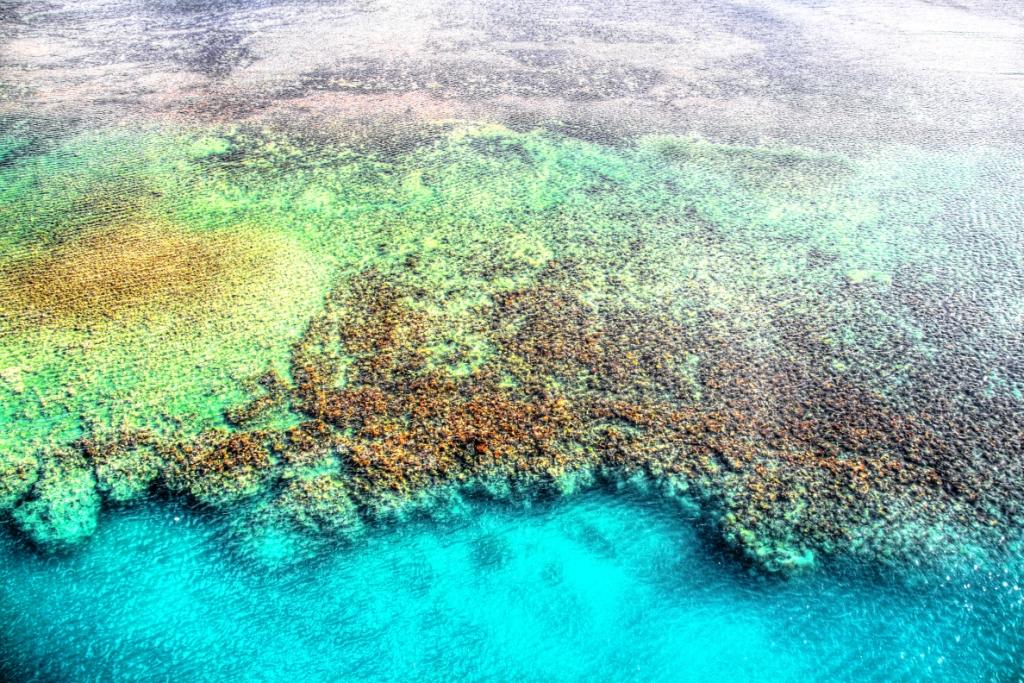 Reef at the berth