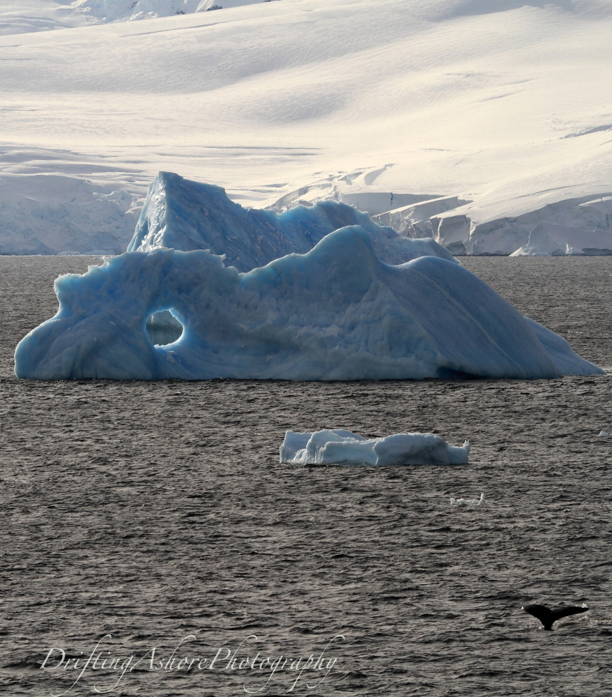 whale tail ice hole